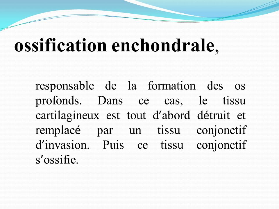 ossification enchondrale,
