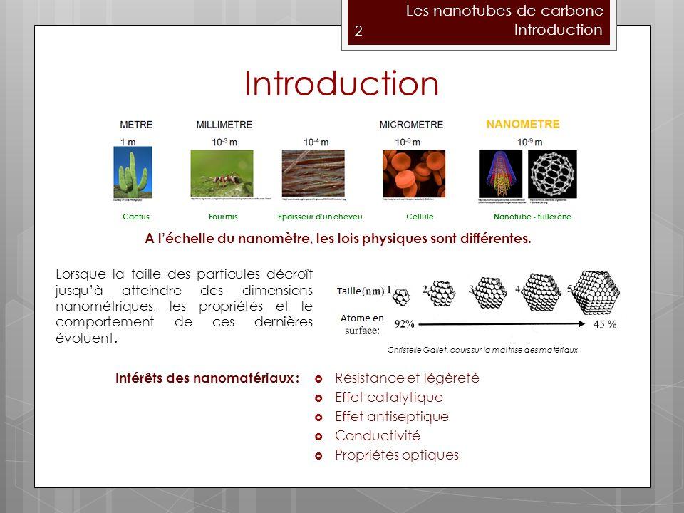 Introduction Les nanotubes de carbone Introduction