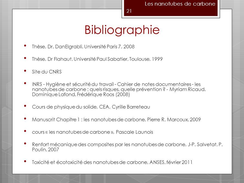 Bibliographie Les nanotubes de carbone