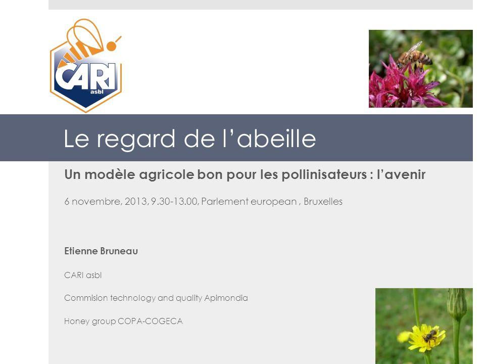Le regard de l'abeille Un modèle agricole bon pour les pollinisateurs : l'avenir. 6 novembre, 2013, 9.30-13.00, Parlement european , Bruxelles.