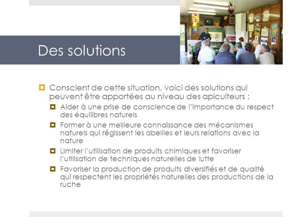 Des solutions Conscient de cette situation, voici des solutions qui peuvent être apportées au niveau des apiculteurs :