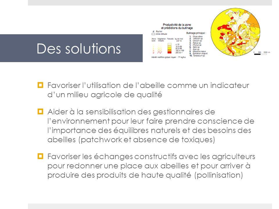 Des solutions Favoriser l'utilisation de l'abeille comme un indicateur d'un milieu agricole de qualité.