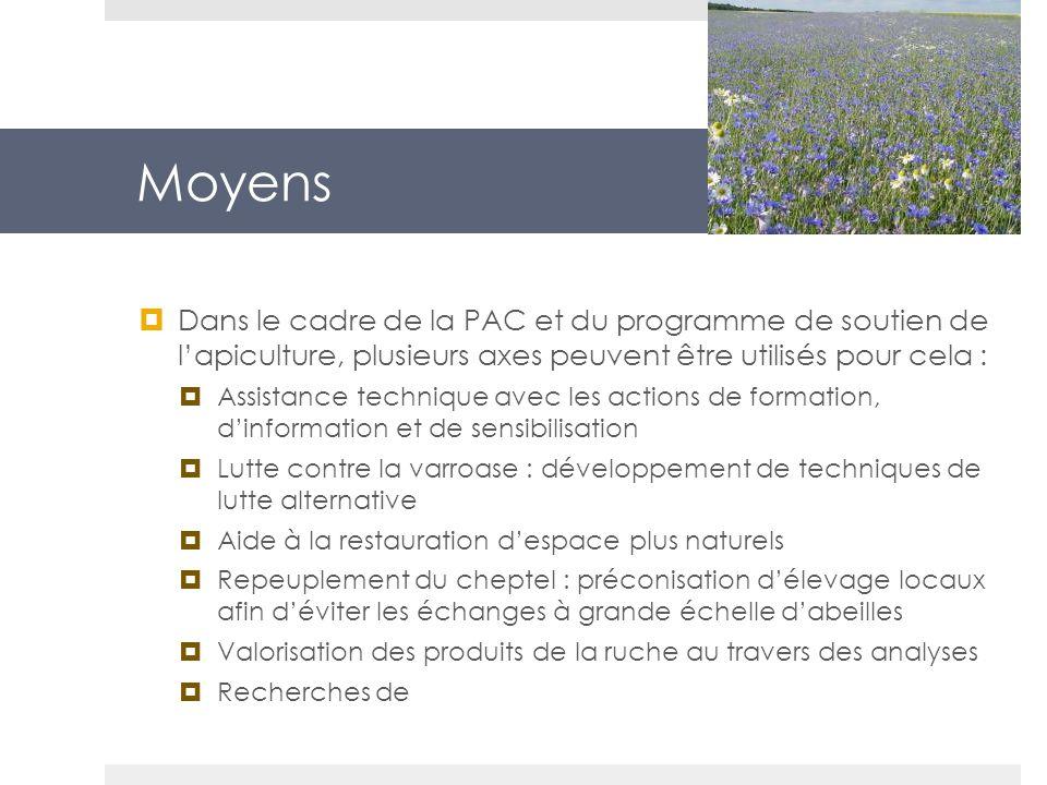 Moyens Dans le cadre de la PAC et du programme de soutien de l'apiculture, plusieurs axes peuvent être utilisés pour cela :