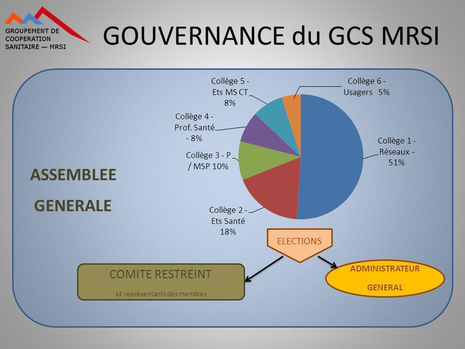 GOUVERNANCE du GCS MRSI