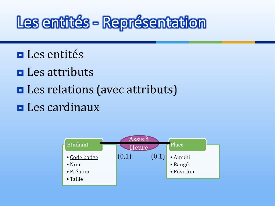 Les entités - Représentation