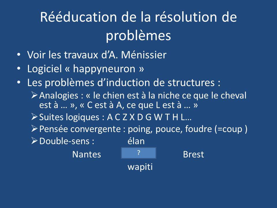 Rééducation de la résolution de problèmes