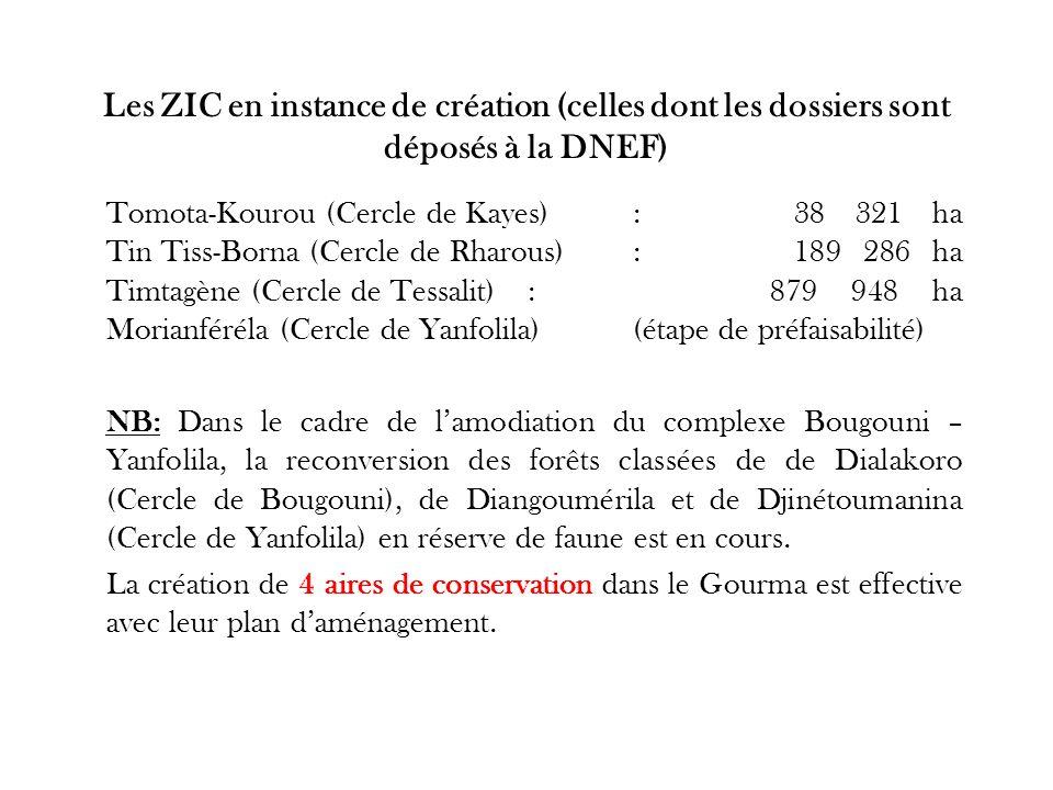 Les ZIC en instance de création (celles dont les dossiers sont déposés à la DNEF)