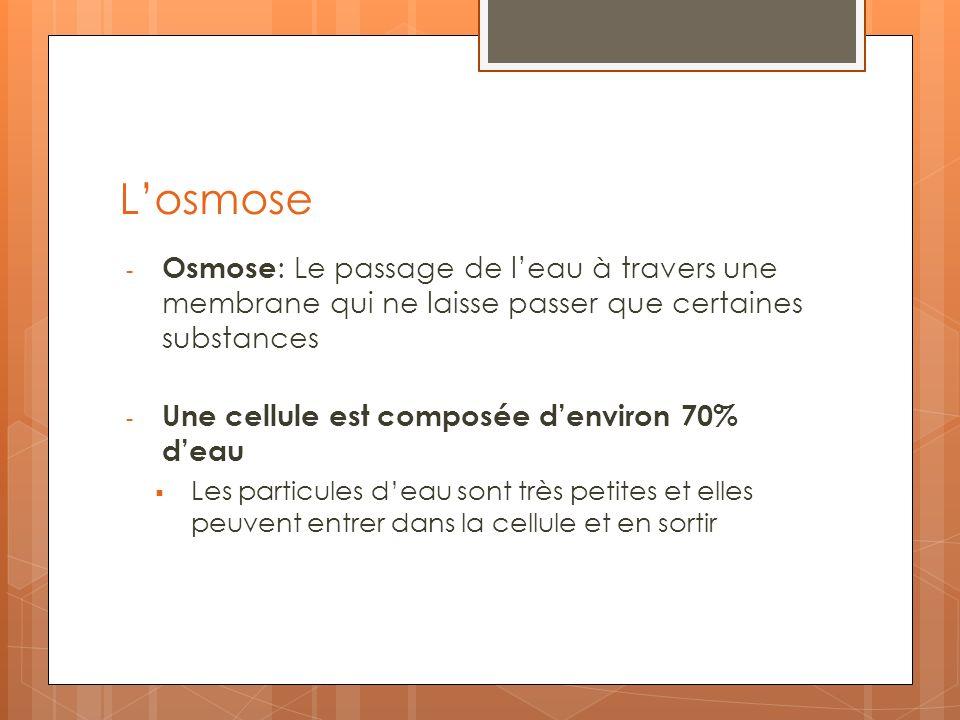 L'osmose Osmose: Le passage de l'eau à travers une membrane qui ne laisse passer que certaines substances.