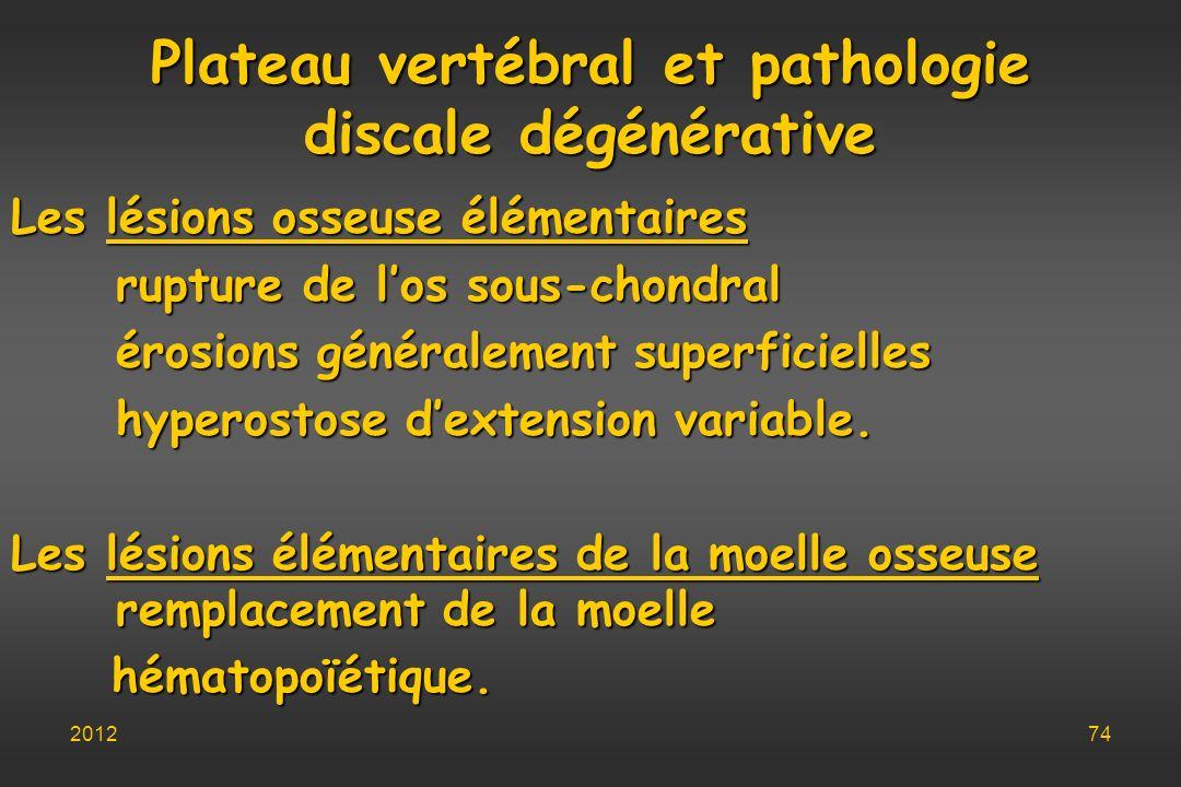 Plateau vertébral et pathologie discale dégénérative