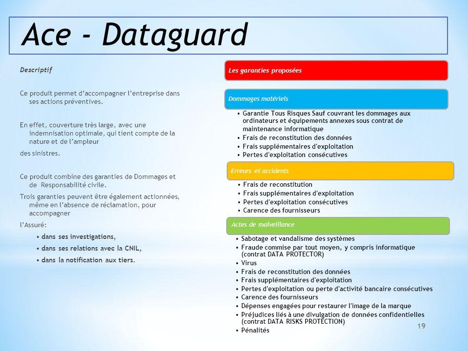 Ace - Dataguard Descriptif