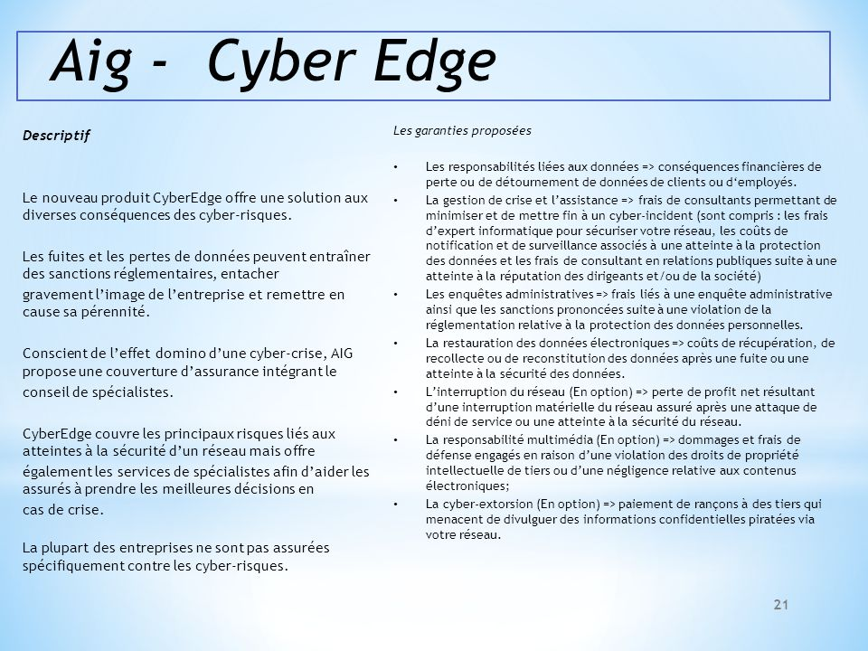 Aig - Cyber Edge Descriptif