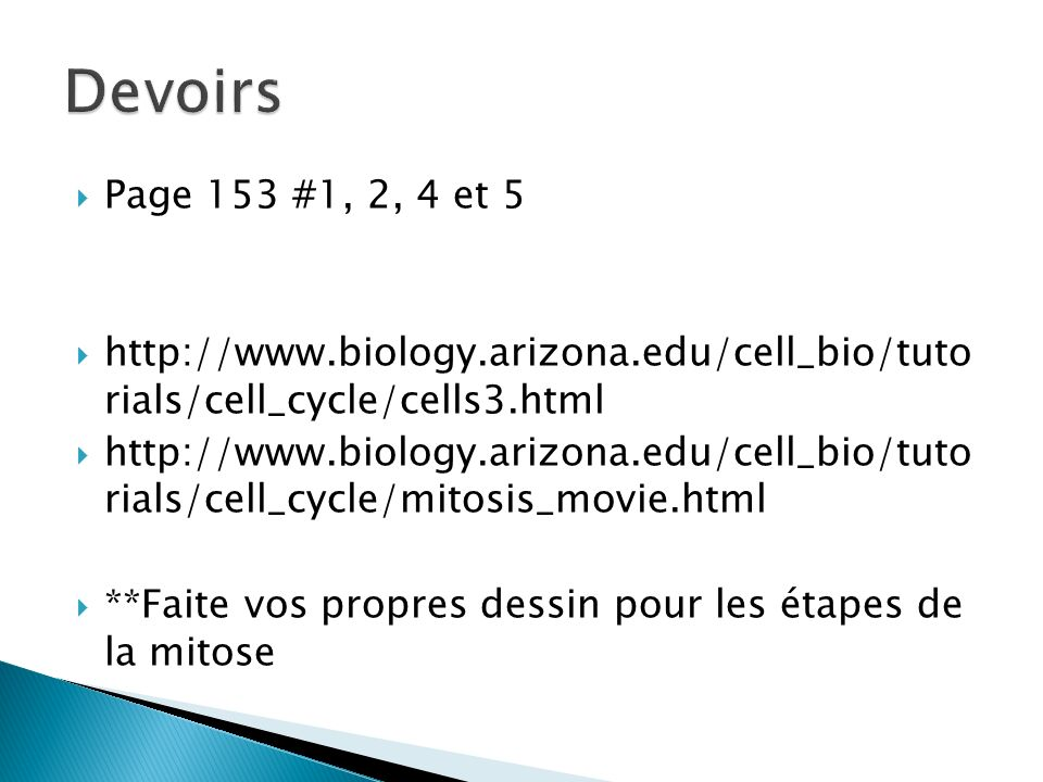 Devoirs Page 153 #1, 2, 4 et 5. http://www.biology.arizona.edu/cell_bio/tuto rials/cell_cycle/cells3.html.