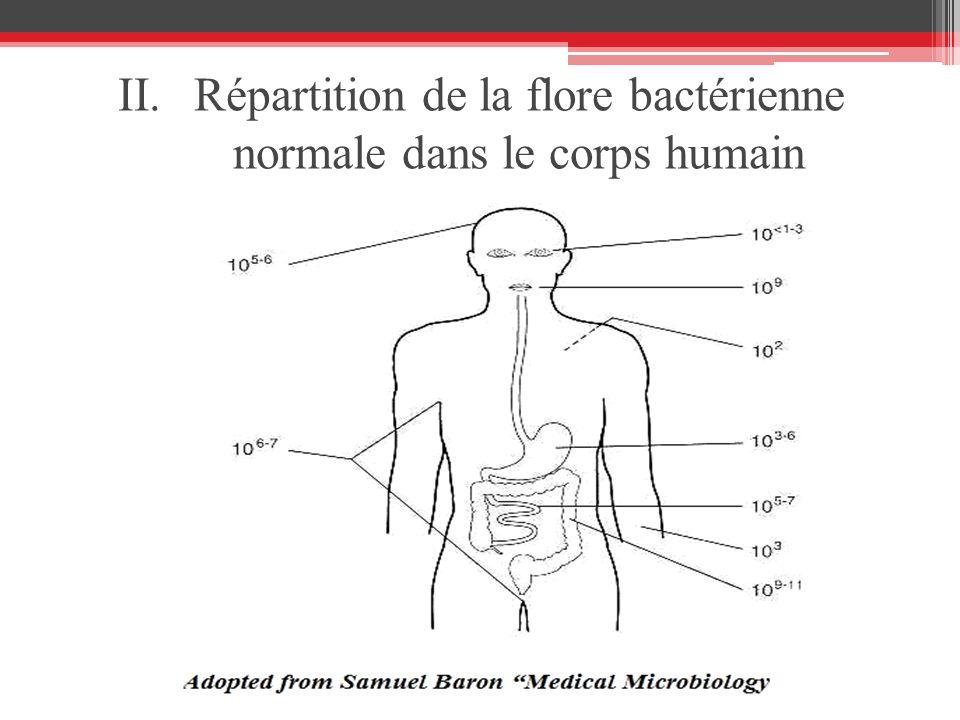 Répartition de la flore bactérienne normale dans le corps humain