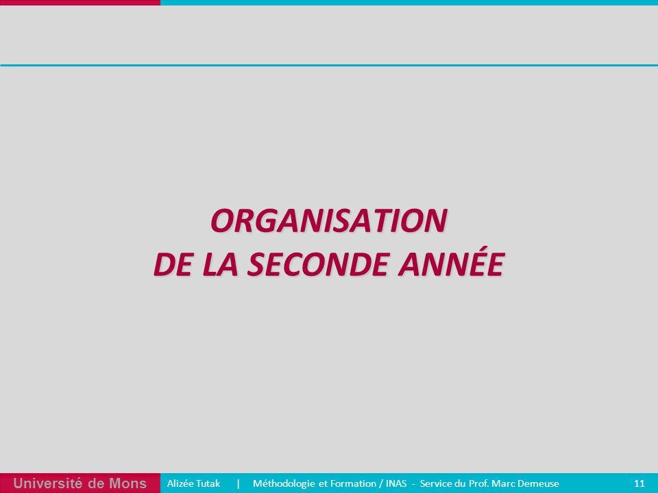 Organisation de la seconde année