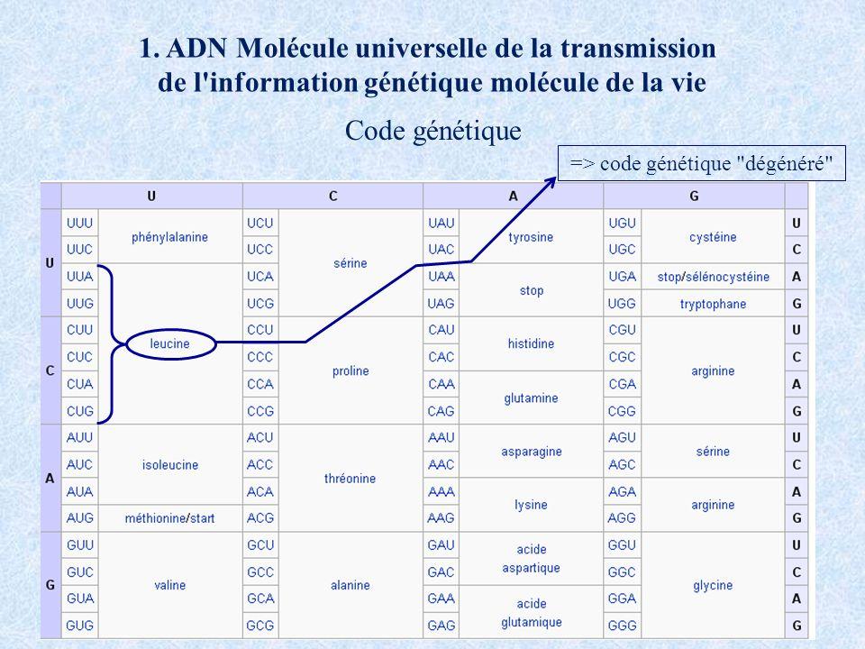 1. ADN Molécule universelle de la transmission