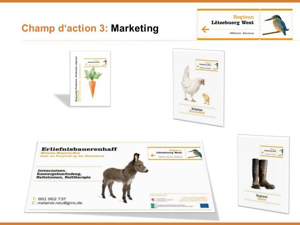 Champ d'action 3: Marketing