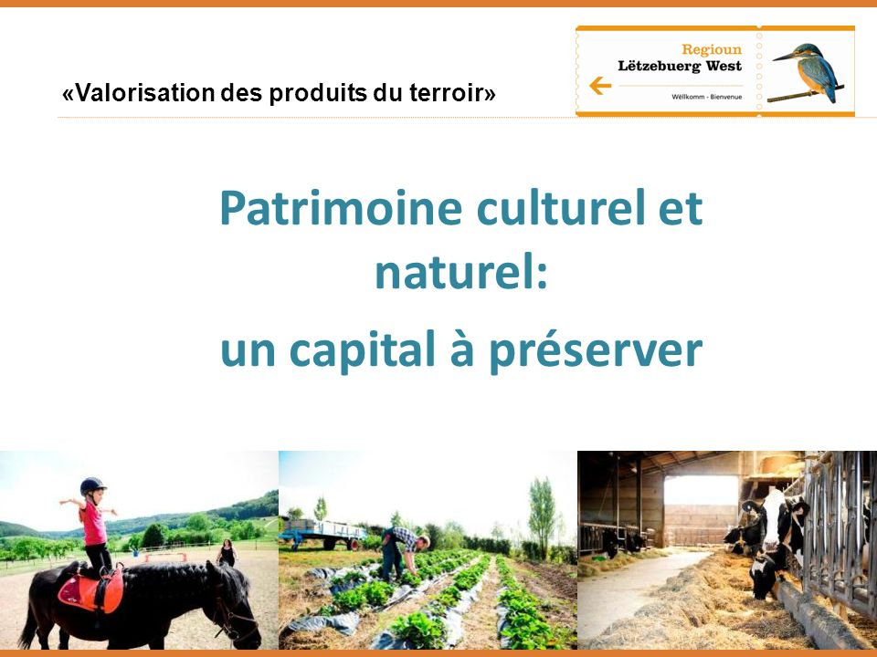 Patrimoine culturel et naturel: