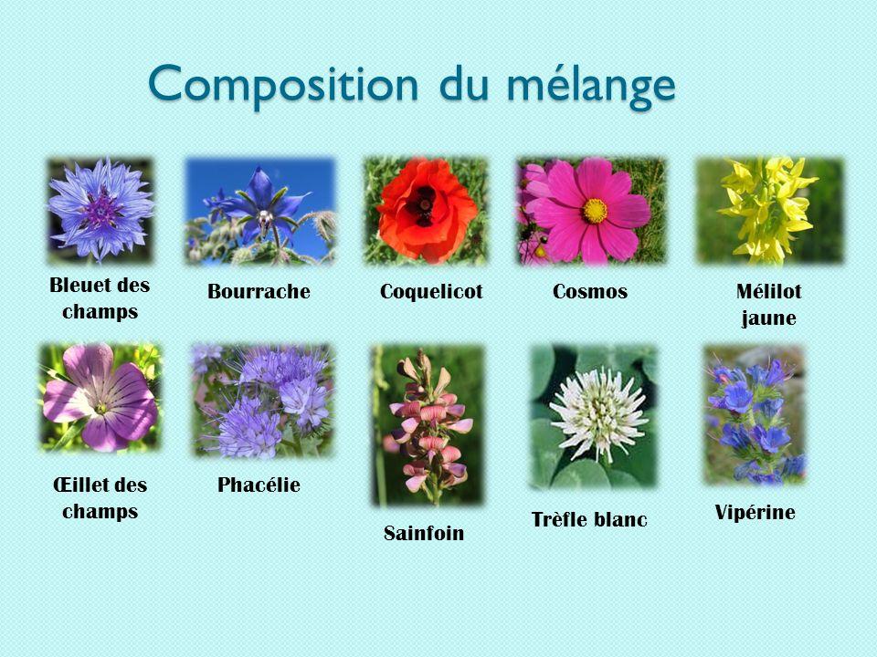Composition du mélange
