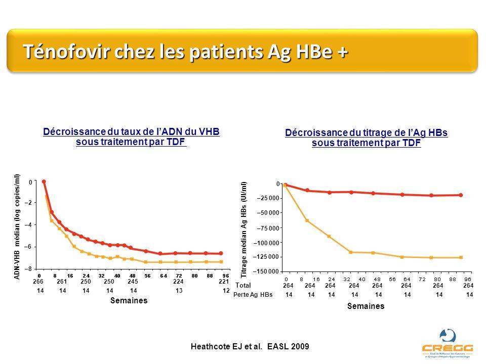 Ténofovir chez les patients Ag HBe +