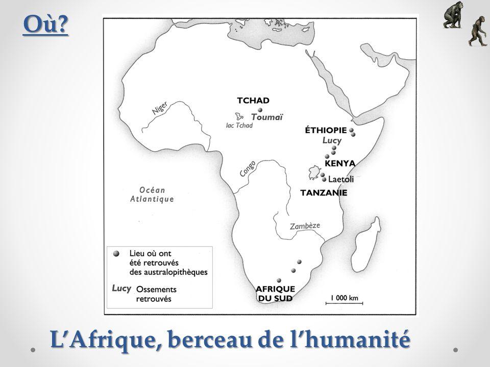L'Afrique, berceau de l'humanité