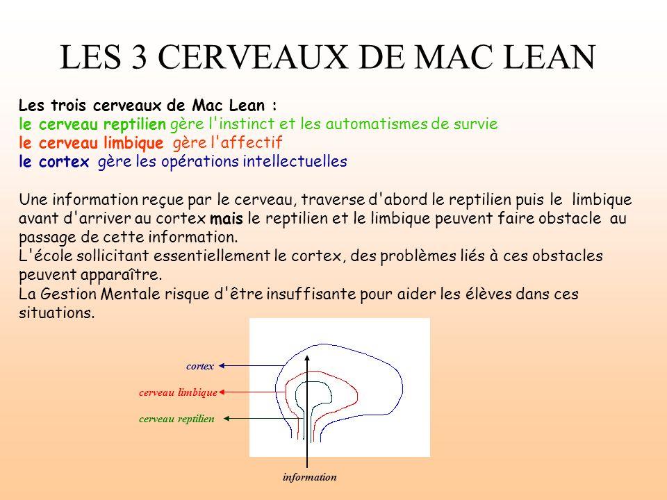 LES 3 CERVEAUX DE MAC LEAN