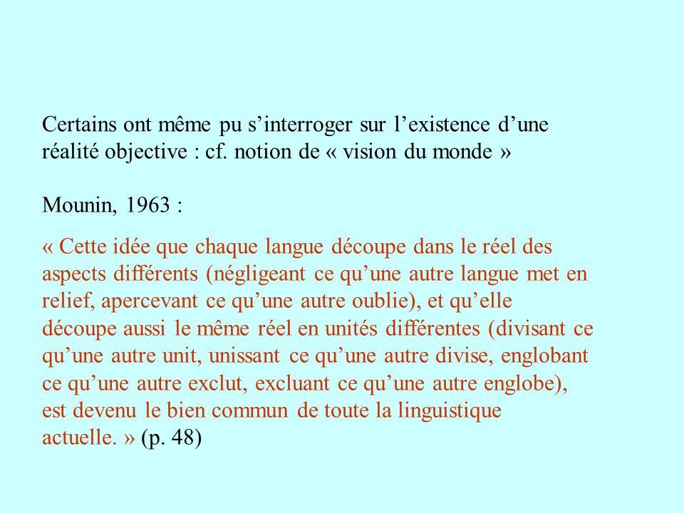 Certains ont même pu s'interroger sur l'existence d'une réalité objective : cf. notion de « vision du monde »