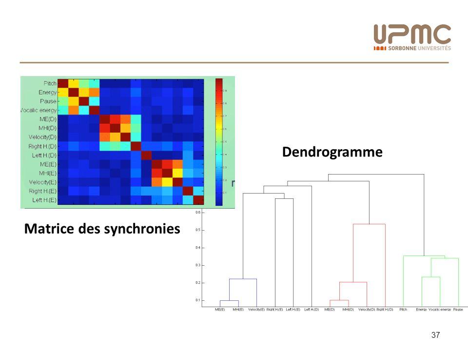 Dendrogramme Matrice des synchronies