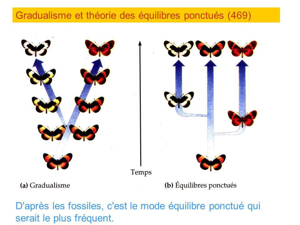 Gradualisme et théorie des équilibres ponctués (469)