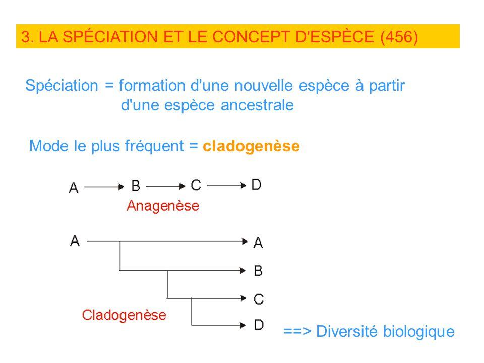 3. LA SPÉCIATION ET LE CONCEPT D ESPÈCE (456)