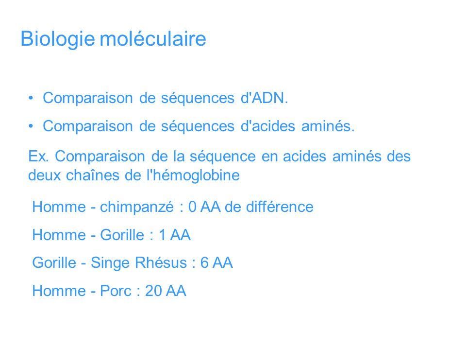 Biologie moléculaire Comparaison de séquences d ADN.