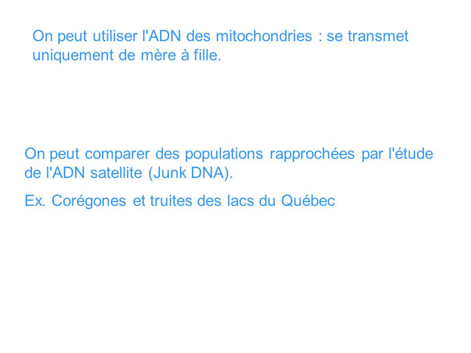 On peut utiliser l ADN des mitochondries : se transmet uniquement de mère à fille.