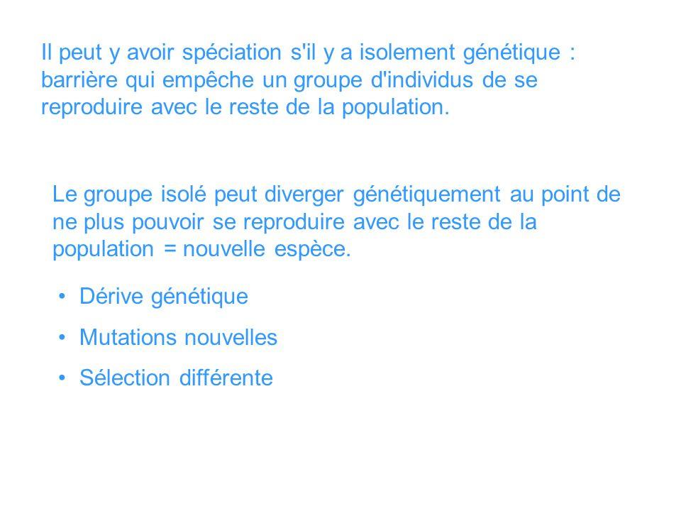 Il peut y avoir spéciation s il y a isolement génétique : barrière qui empêche un groupe d individus de se reproduire avec le reste de la population.