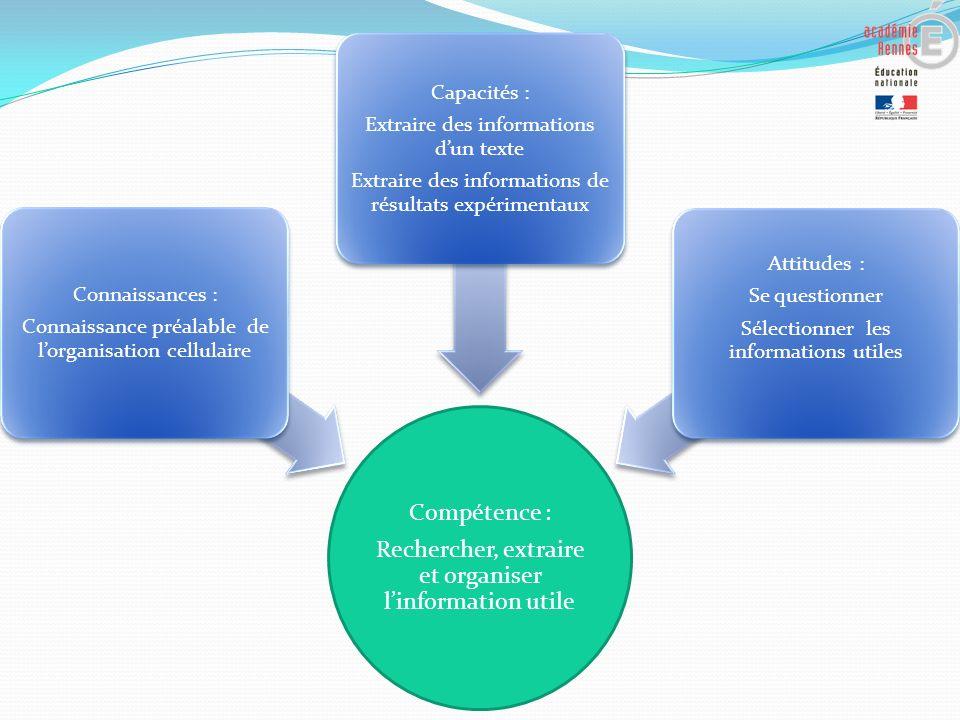 Rechercher, extraire et organiser l'information utile