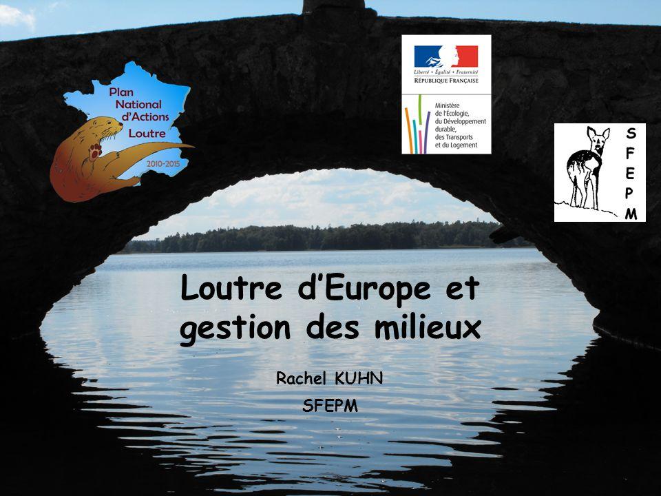 Loutre d'Europe et gestion des milieux