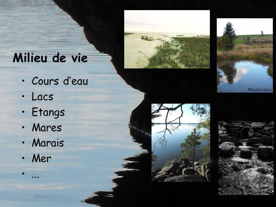 Milieu de vie Cours d'eau Lacs Etangs Mares Marais Mer ...