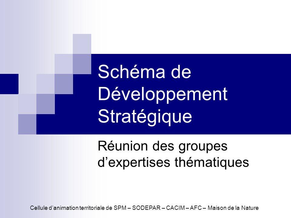 Schéma de Développement Stratégique