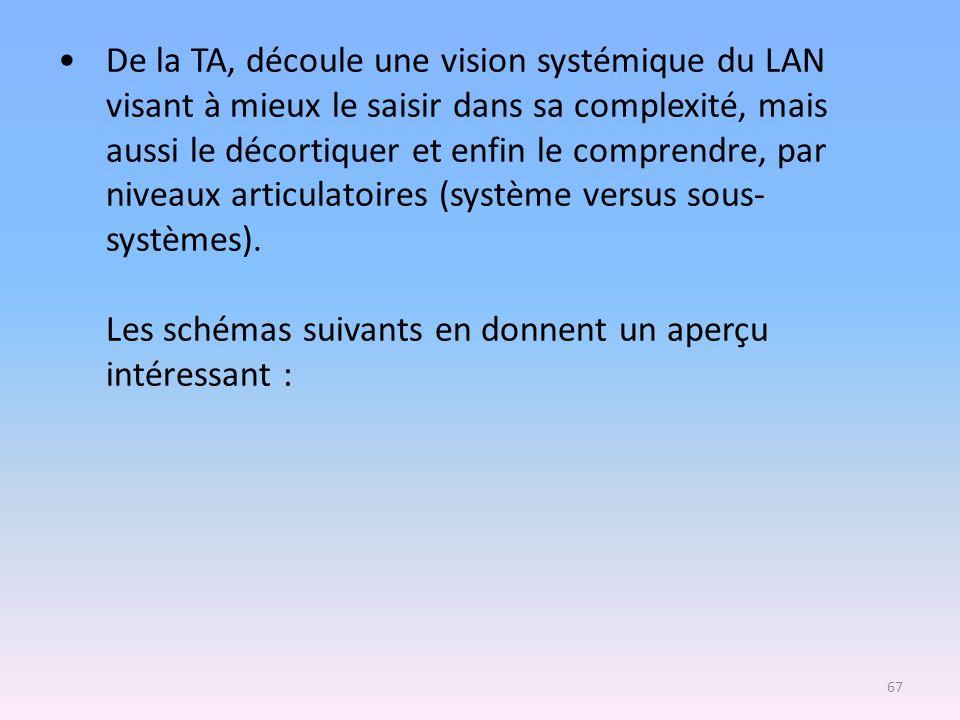 De la TA, découle une vision systémique du LAN visant à mieux le saisir dans sa complexité, mais aussi le décortiquer et enfin le comprendre, par niveaux articulatoires (système versus sous-systèmes).