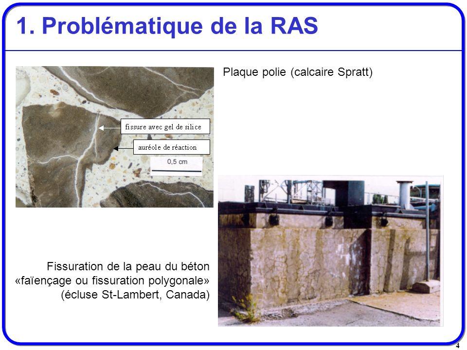 1. Problématique de la RAS
