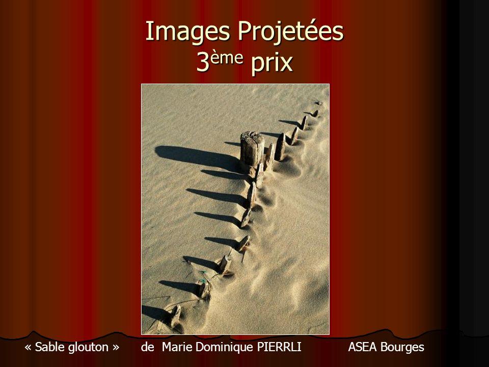 Images Projetées 3ème prix