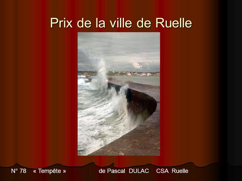 Prix de la ville de Ruelle