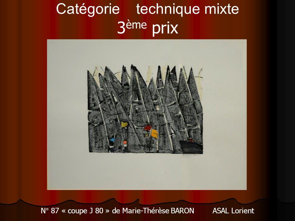 Catégorie technique mixte 3ème prix
