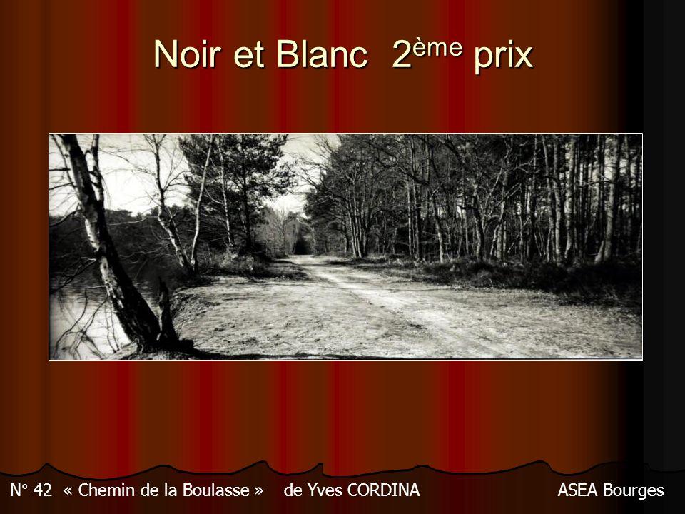 N° 42 « Chemin de la Boulasse » de Yves CORDINA ASEA Bourges
