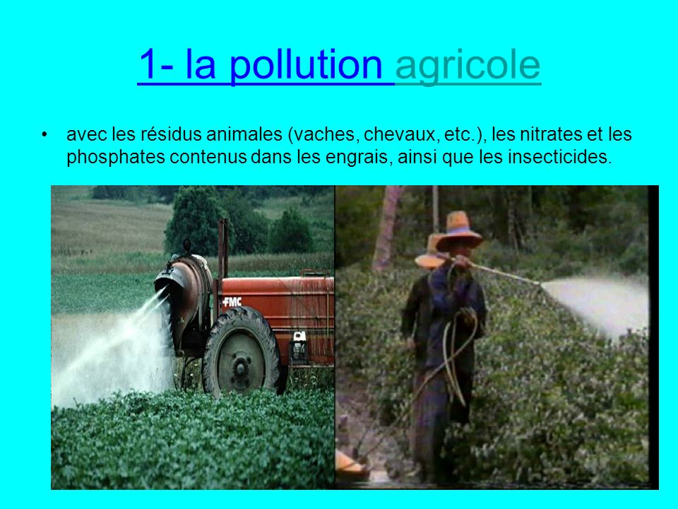 1- la pollution agricole
