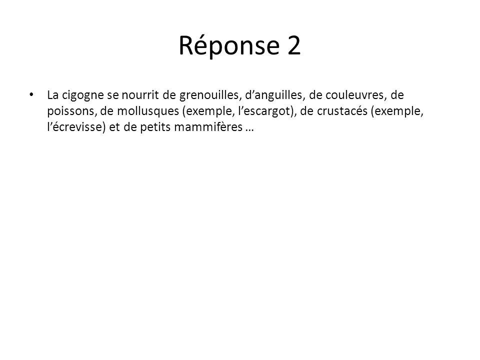 Réponse 2