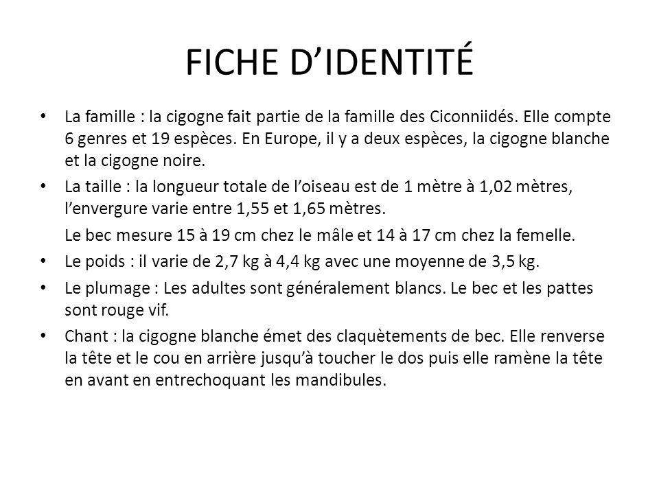 FICHE D'IDENTITÉ