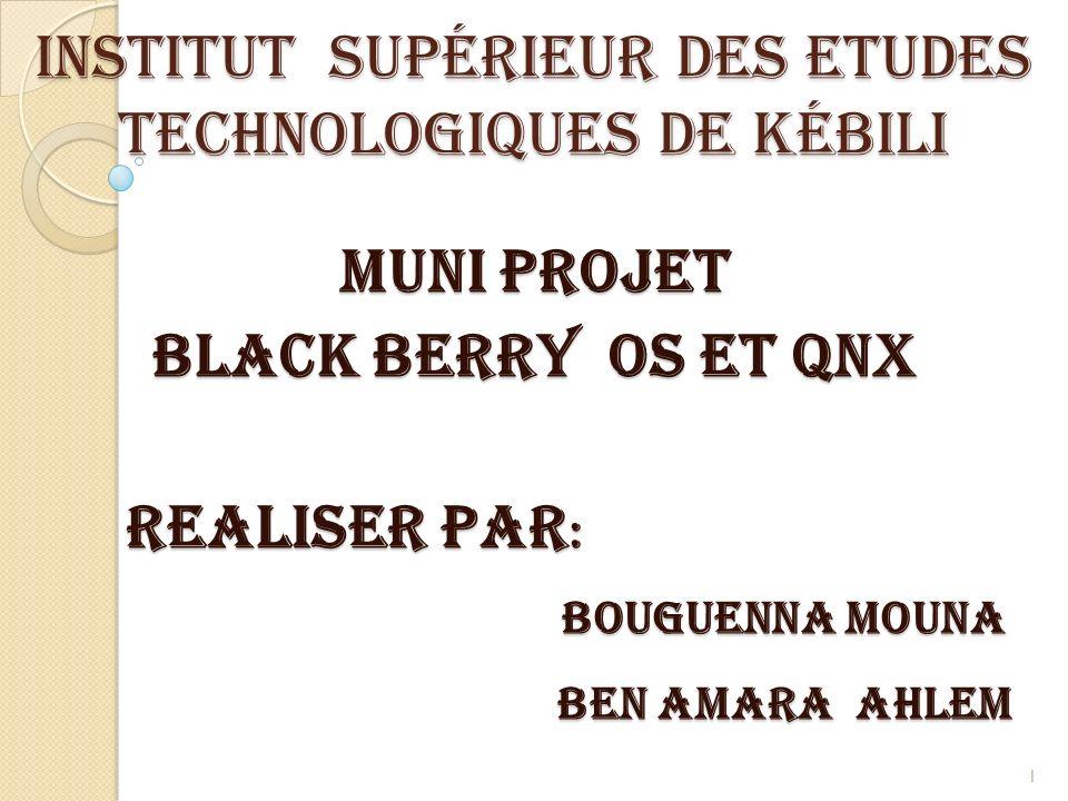 Institut Supérieur des Etudes Technologiques de Kébili