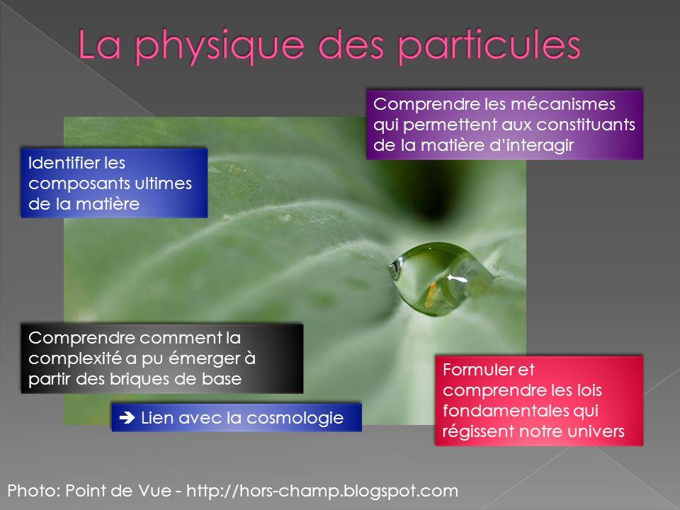 La physique des particules