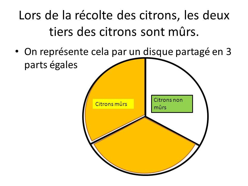 Lors de la récolte des citrons, les deux tiers des citrons sont mûrs.