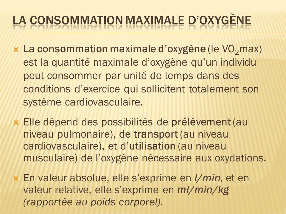 la consommation maximale d'oxygène