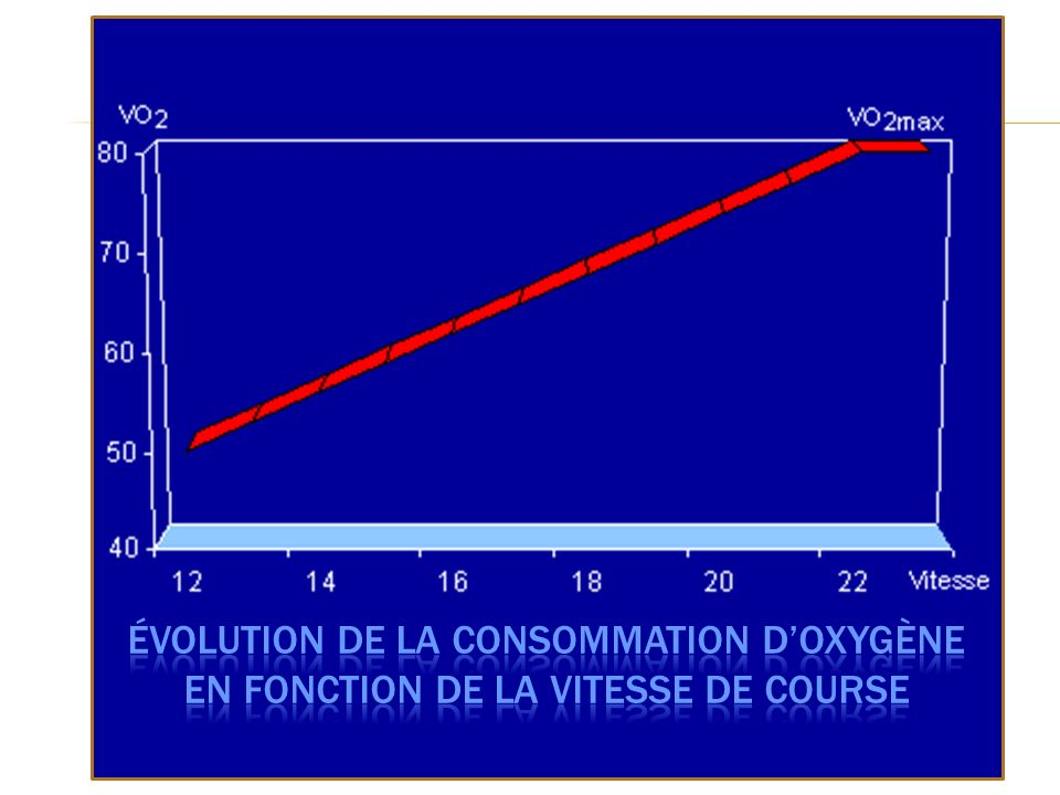 Évolution de la consommation d'oxygène en fonction de la vitesse de course